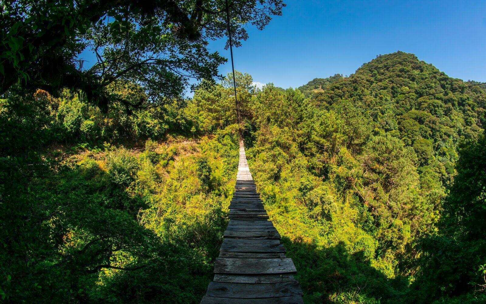Parque Ecológico Pino Dulce